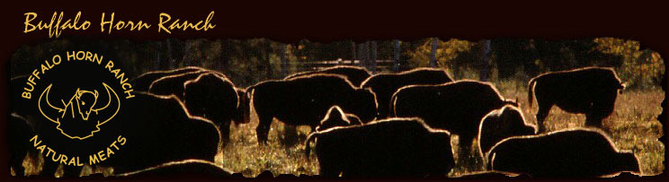 Buffalo Horn Ranch - Natural Bison & Buffalo Meat